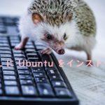 WSL に Ubuntu をインストール